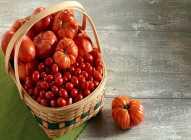 Koliko kalorija sadrži paradajz?