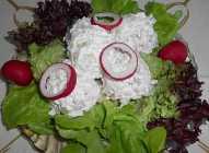 Prolećna bela salata