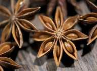 Zvezdasti anis - začin i lekovita biljka