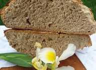 Hleb sa kajmakom
