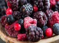 Koliko dugo možete zamrzavati voće?
