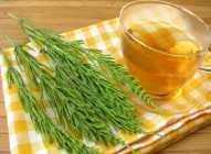 Kako čaj od rastavića utiče na zdravlje?