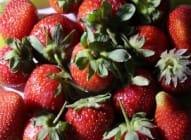 Deset činjenica koje niste znali o jagodama