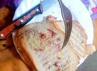 Brzi i laki topli sendviči